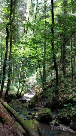Welzheim, Alemanha: IMG_20180617_124357_large.jpg