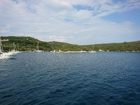 Maslinica, Croatia: DSC_0119_large.jpg