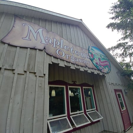 ‪‪Kitchener‬, كندا: mapleton organic‬