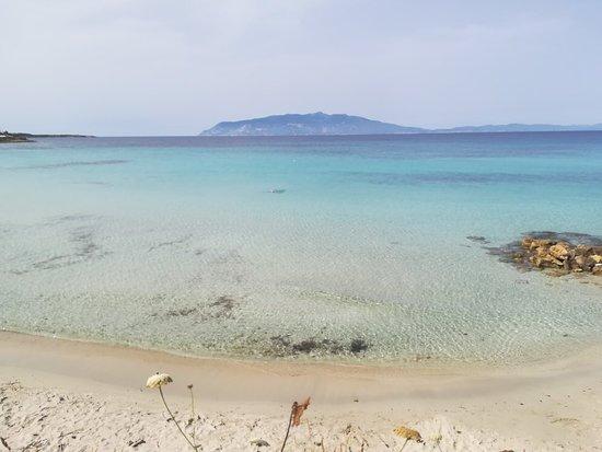 Isola di Pianosa: IMG_20180610_163623_large.jpg
