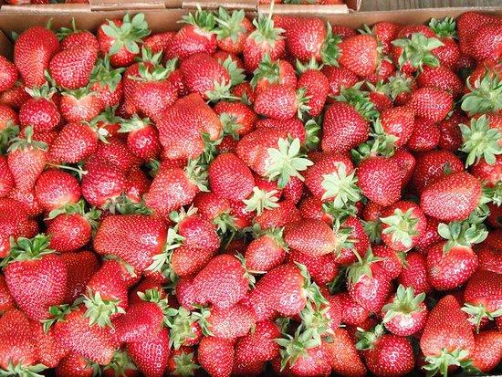 Gieringer's Family Orchard & Berry Farm