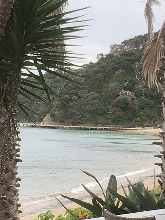 Kawau Island Photo