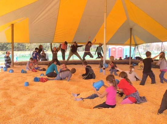 Edgerton, KS: Giant corn pit!