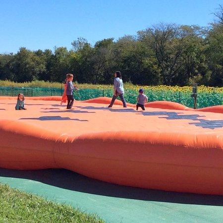 Edgerton, Kansas: Pumpkin jump.