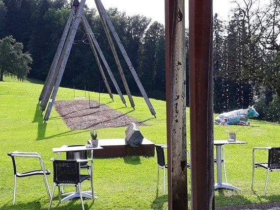 Pfaeffikon, Schweiz: 20180618_174201_large.jpg