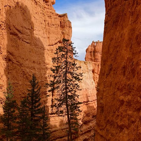 Nice hotel for a one day stay while visiting Bryce Canyon