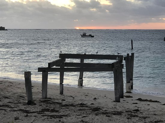Hamelin Bay Φωτογραφία