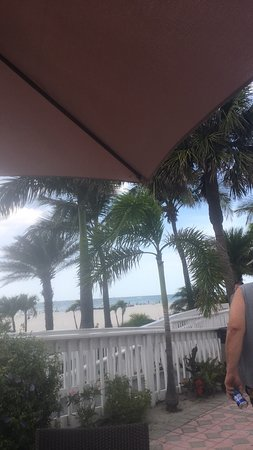 Bongos Beachside Bistro St Pete Beach Menu Prices