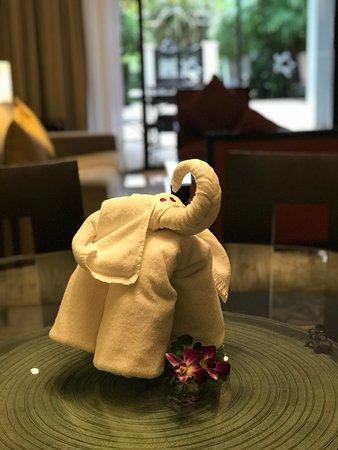 Marriott's Mai Khao Beach - Phuket: Addressing the elephant in the living room