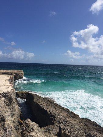 Фотография Bonaire National Marine Park
