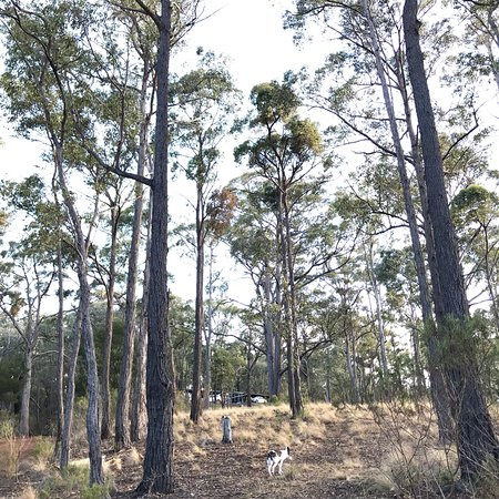 Briagolong, Australia: photo5.jpg