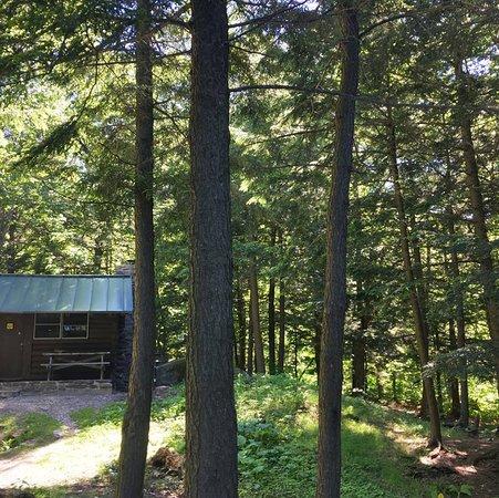 Savoy, MA: Cabin 1