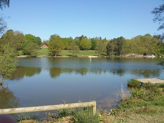 Tilgate Park: Lovely walk around the lake