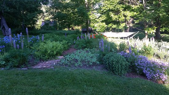 Bridgewater Corners, VT: Garden area