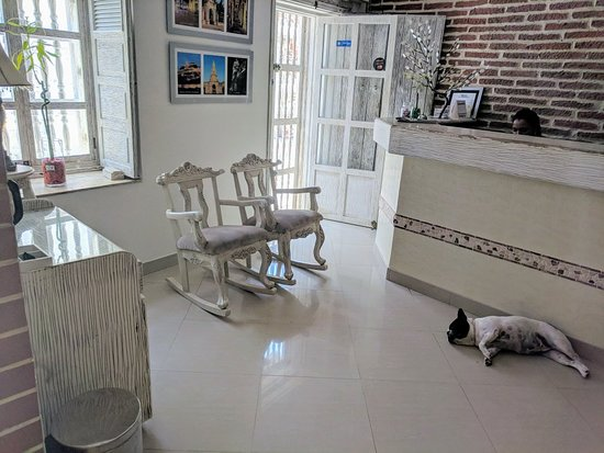 Hotel la Magdalena: IMG_20180607_111436_large.jpg
