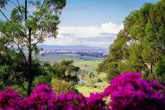 Rosebrook, Australia: View from Ironbark verandah