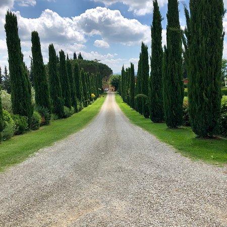 Al Gelso Bianco Farm-Holiday Resort: photo2.jpg