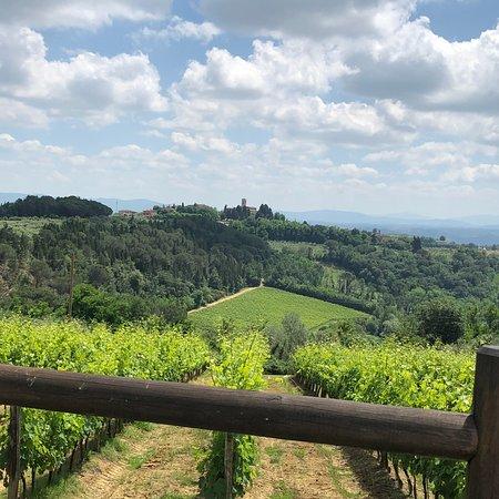 Al Gelso Bianco Farm-Holiday Resort: photo3.jpg