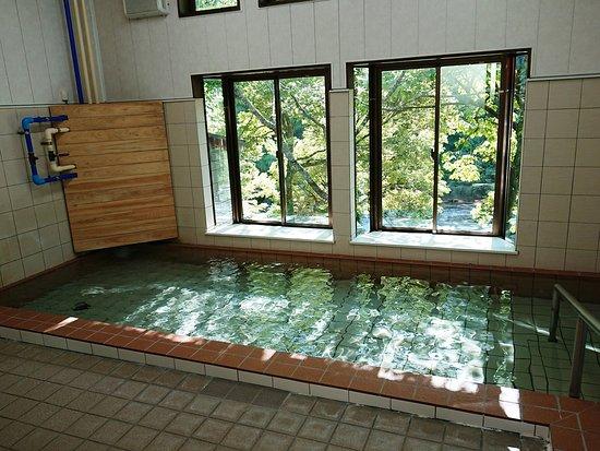 Fujikawachi Yutopia