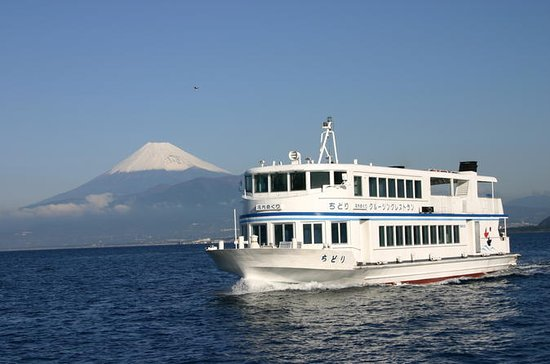 Suruga Bay e Mishima Skywalk...