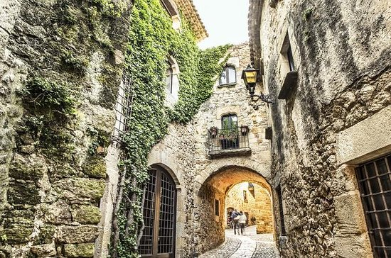 From Barcelona: Tour to Girona by...