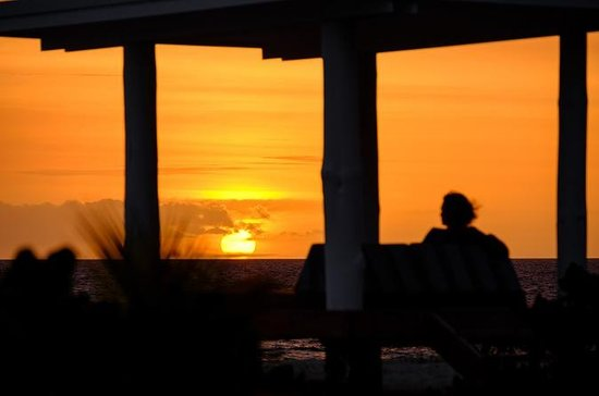 Sunsets and Seafood Dinner Experience