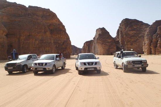 8 jours en 4x4: désert algérien...