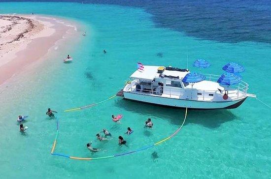 Icacos Snorkel Safari Charter