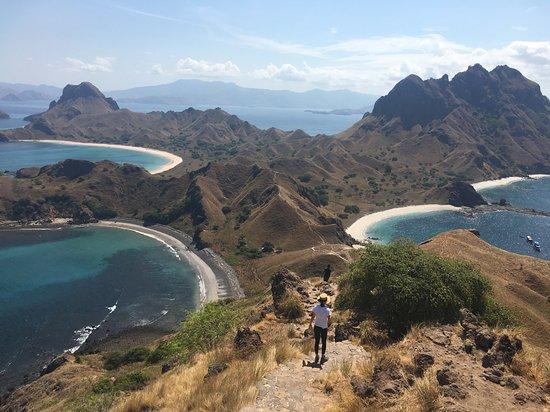 Louis Komodo and Flores Island Tours: padar island