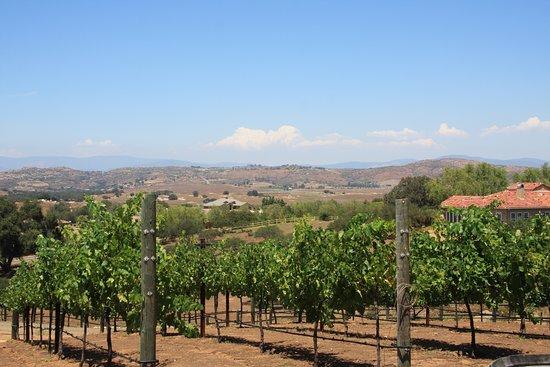 Kohill Winery