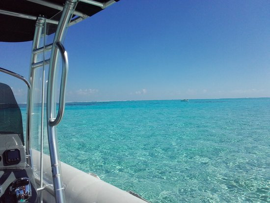 Bluelagoon Taxi Boat照片