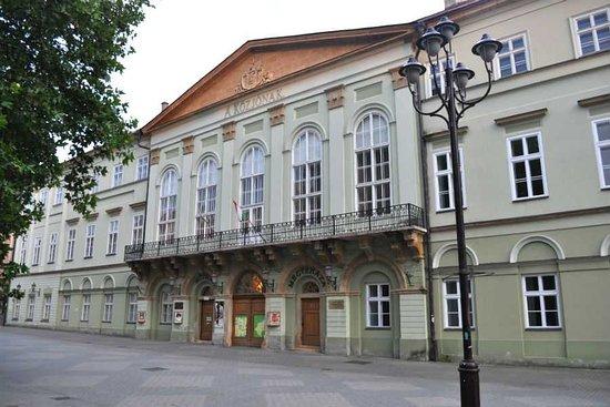 Kaposvar, Hungria: Múzeum