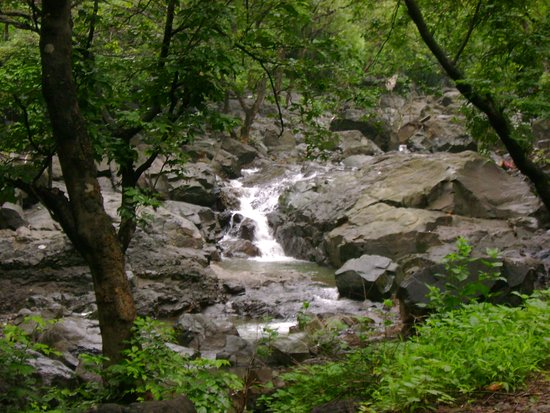 Tungareshwar Wildlife Sanctuary 사진