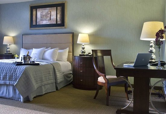 Doubletree Houston Intercontinental Airport: Suite