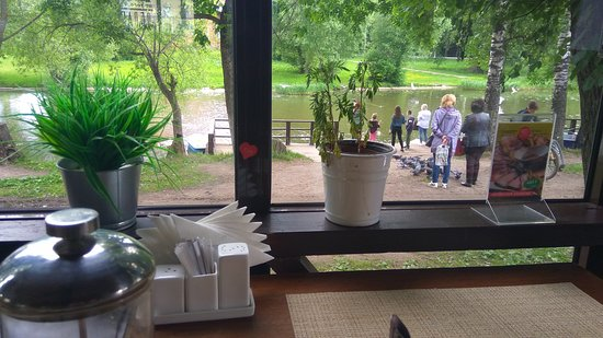 СЛОН  Кафе Веранда: За окном - кино