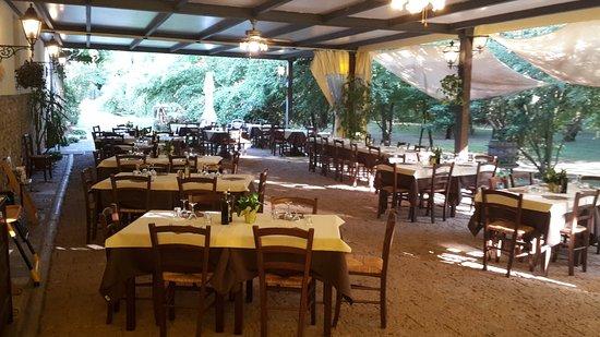 Gruaro, إيطاليا: Dalla nostra terrazza si gode una splendida vista sul parco