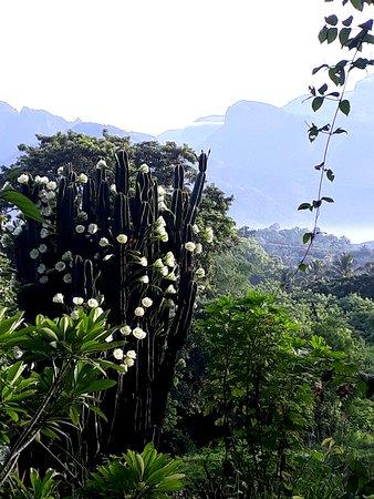 Landscape - Picture of Ambat Farmstay, Palakkad - Tripadvisor