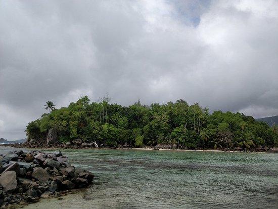 Cerf Island, Îles Seychelles : IMG_20180613_095029_large.jpg
