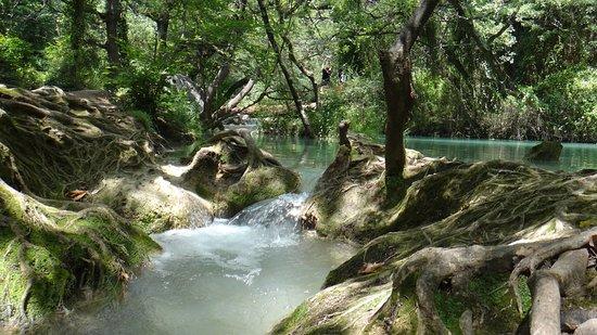 Sillans-la-Cascade, Γαλλία: La rivière
