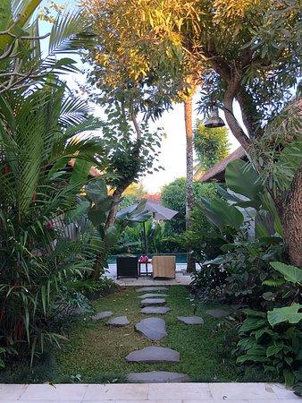 Luwak Ubud Villas: Valley View