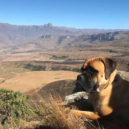 Amazing Drakensberg resort with great family feel