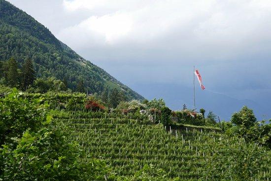 Cermes, Italia: Einmalige Lage in der Natur