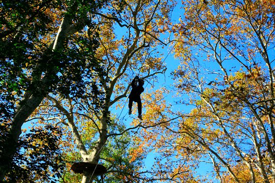 Ecopark Adventures Monteclin