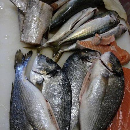 Olevano Romano, Italy: Pescato del giorno