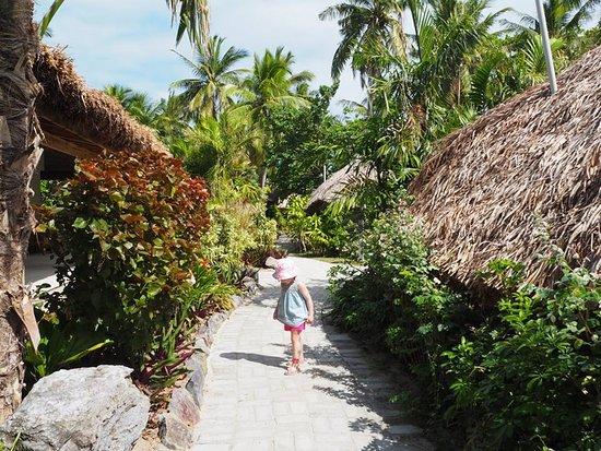 Castaway Island Fiji : Beautiful pathways surrounded by manicured gardens..