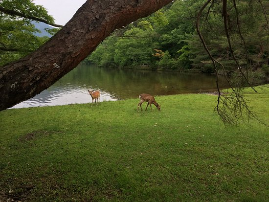 Takaragaike Park
