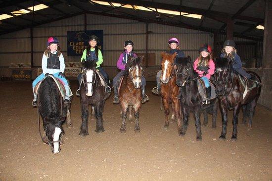Doora, Ireland: Ponies