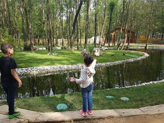 Basiskele, ตุรกี: Uzuntarla Tabiat Parki