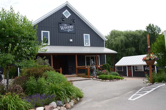 The Blind Horse Winery: Our place