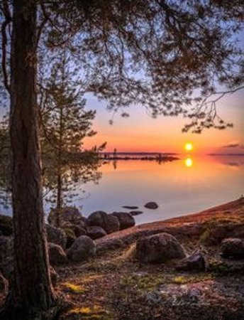 Finlandiya Resmi